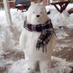 8 февраля, день снежков