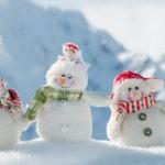 29 января, день снега